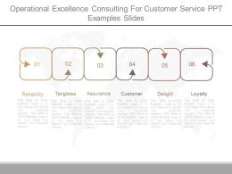 Operational Excellence Consulting For Customer Service Ppt Examples Slides