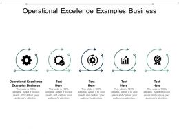Operational Excellence Examples Business Ppt Powerpoint Presentation Gallery Vector Cpb