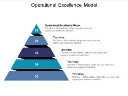Operational Excellence Model Ppt Powerpoint Presentation Slides Example Topics Cpb