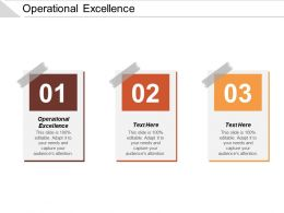 Operational Excellence Ppt Powerpoint Presentation Styles Graphics Pictures Cpb