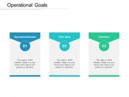 Operational Goals Ppt Powerpoint Presentation Icon Styles Cpb