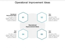 Operational Improvement Ideas Ppt Powerpoint Presentation Inspiration Example Cpb