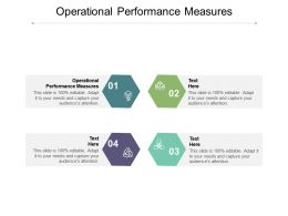 Operational Performance Measures Ppt Powerpoint Presentation Gallery Background Cpb