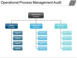 Operational Process Management Audit Powerpoint Slide Ideas