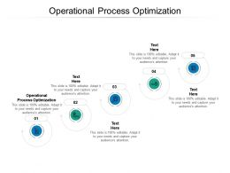 Operational Process Optimization Ppt Powerpoint Presentation Example Cpb