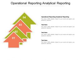 Operational Reporting Analytical Reporting Ppt Powerpoint Presentation Model Inspiration Cpb