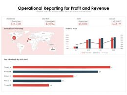 Operational Reporting For Profit And Revenue