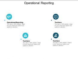 Operational Reporting Ppt Powerpoint Presentation Icon Visual Aids Cpb
