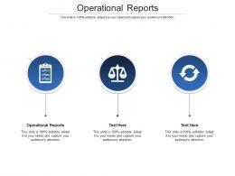 Operational Reports Ppt Powerpoint Presentation Icon Portfolio Cpb