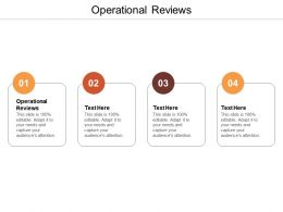 Operational Reviews Ppt Powerpoint Presentation Pictures Icon Cpb