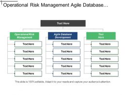 Operational Risk Management Agile Database Development Investment Management Cpb