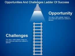 Opportunities And Challenges Ladder Of Success Powerpoint Slide
