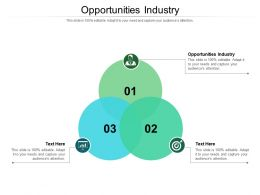 Opportunities Industry Ppt Powerpoint Presentation Pictures File Formats Cpb