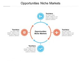 Opportunities Niche Markets Ppt Powerpoint Presentation Layouts Styles Cpb