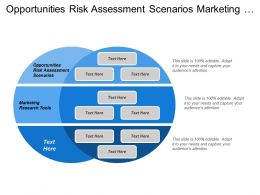 Opportunities Risk Assessment Scenarios Marketing Research Tools Personal Observations