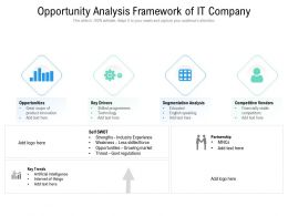 Opportunity Analysis Framework Of IT Company