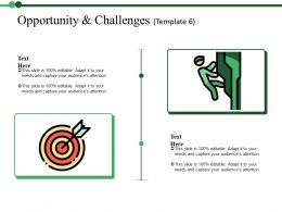 Opportunity And Challenges Ppt Summary