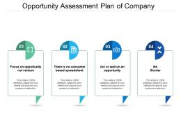 Opportunity Assessment Plan Of Company