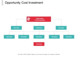 Opportunity Cost Investment Ppt Powerpoint Presentation Styles Portrait Cpb