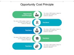 Opportunity Cost Principle Ppt Powerpoint Presentation Visual Aids Inspiration Cpb