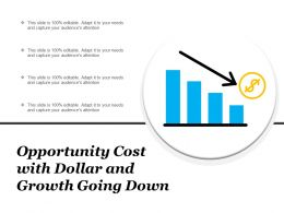 Opportunity Cost With Dollar And Growth Going Down