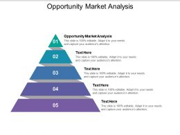 Opportunity Market Analysis Ppt Powerpoint Presentation Template Cpb