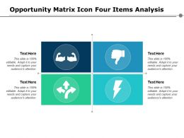 Opportunity Matrix Icon Four Items Analysis