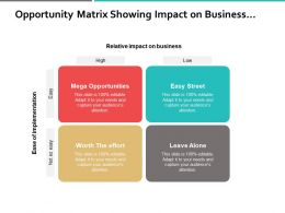 Opportunity Matrix Showing Impact On Business And Implementations
