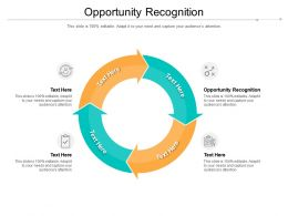 Opportunity Recognition Ppt Powerpoint Presentation Slides Portrait Cpb