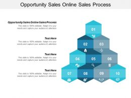 Opportunity Sales Online Sales Process Ppt Powerpoint Presentation Styles Show Cpb