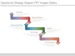 Opportunity Strategy Diagram Ppt Images Gallery