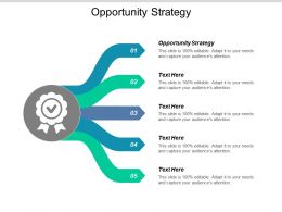 Opportunity Strategy Ppt Powerpoint Presentation Styles Graphics Design Cpb
