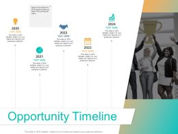 Opportunity Timeline Ppt Powerpoint Presentation Ideas Example