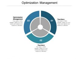 Optimization Management Ppt Powerpoint Presentation Icon Backgrounds Cpb