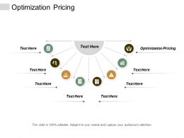 Optimization Pricing Ppt Powerpoint Presentation Show Cpb