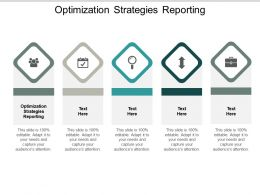 Optimization Strategies Reporting Ppt Powerpoint Presentation Infographic Template Clipart Cpb