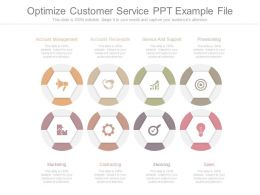 Optimize Customer Service Ppt Example File