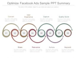 Optimize Facebook Ads Sample Ppt Summary