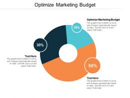 Optimize Marketing Budget Ppt Powerpoint Presentation File Example Introduction Cpb
