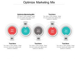 Optimize Marketing Mix Ppt Powerpoint Presentation File Slideshow Cpb