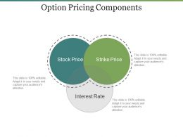 Option Pricing Components Ppt Icon
