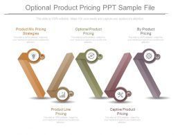 Optional Product Pricing Ppt Sample File