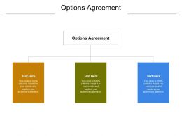 Options Agreement Ppt Powerpoint Presentation Portfolio Themes Cpb