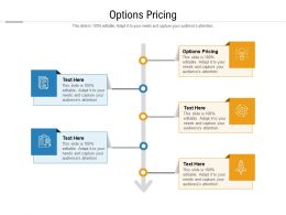 Options Pricing Ppt Powerpoint Presentation Slides Introduction Cpb