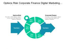 Options Risk Corporate Finance Digital Marketing Organizational Behavior Cpb
