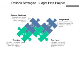 Options Strategies Budget Plan Project Management Employment Assessment Cpb