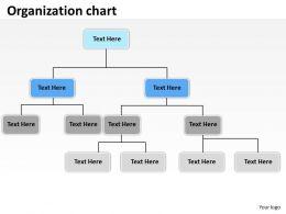 Oraganization chart 22