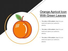 Orange Apricot Icon With Green Leaves