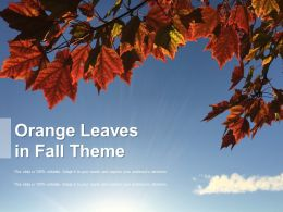 Orange Leaves In Fall Theme