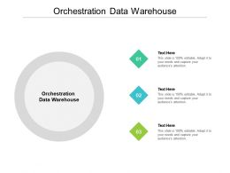 Orchestration Data Warehouse Ppt Powerpoint Presentation Professional Shapes Cpb